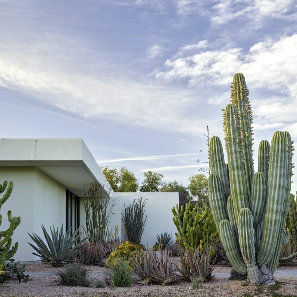 Historic Cactus Garden