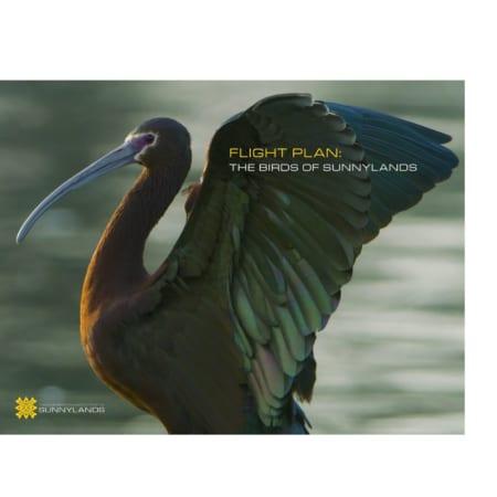 Flight Plan: The Birds of Sunnylands